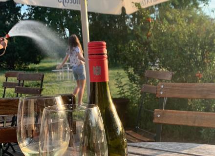 Bei Hitze: kalte Dusche oder Kaltgetränk? Wir empfehlen gekühlten Wein.